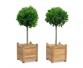 Large Zen Teak Garden Planters - Set of 2